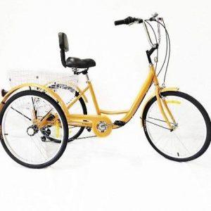 Triciclo de adulto Xian