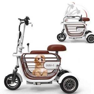 Triciclo eléctrico WLY